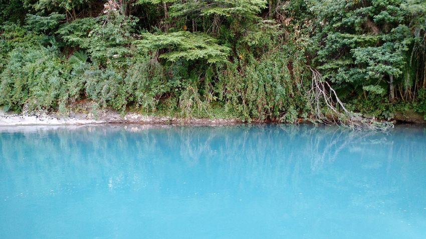 Carretera Austral de Chile Beauty In Nature Day Idyllic Nature No People Outdoors Reflection Scenics Tranquil Scene Tranquility Waterfall