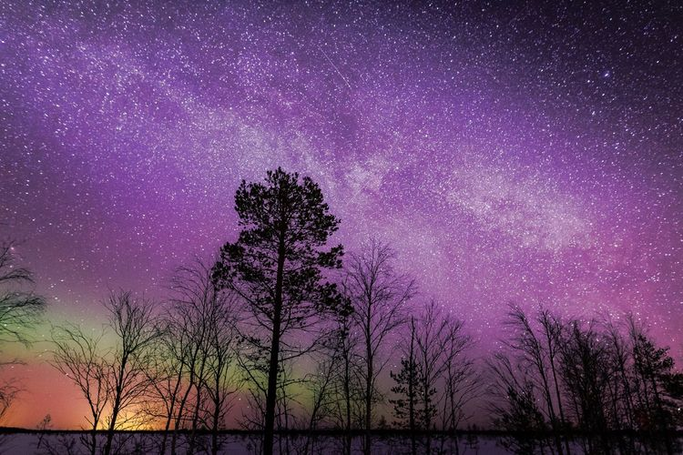 Under these stars Sky Beauty In Nature Star - Space Purple Night Nature Tranquil Scene Tranquility Silhouette No People Astronomy Low Angle View Galaxy Outdoors Milky Way Universe Nebula Explore Landscape Freshness Scenics Taking Photos Hanging Out Science Check This Out