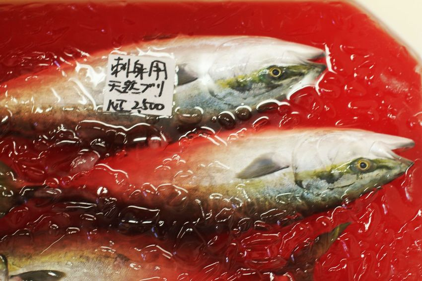fresh... fish .... Blood Blood Bath Close-up Day Dead Fish Fish Market Fish Markets Food For Sale Freshness Ice Ice Cube Indoors  Japanese Food Japanese Style No People Red Text Water