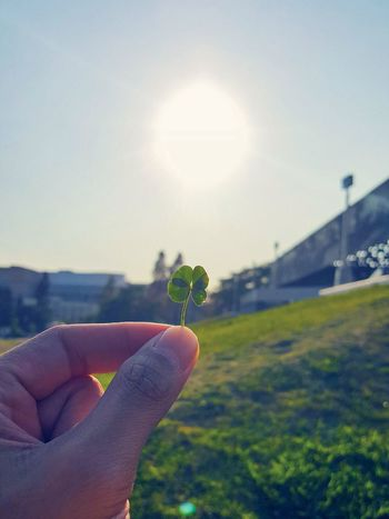 Lacma Lacmamuseum Labreatarpits Four Leaf Clover Lucky Goodluckcharm Goodluck Note5 Note5photography Note5camera Samsungphotography
