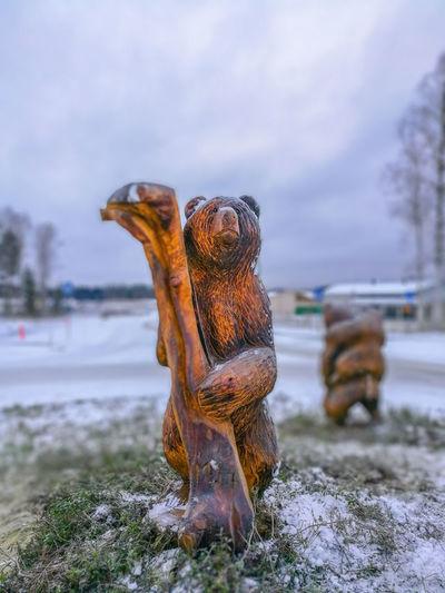 Carved Wooden
