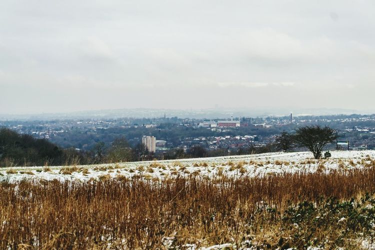 View of Tameside Stalybridge Gorse Hall View Tameside Nature Field Agriculture Growth Cold Temperature Tranquility Day Rural Scene Outdoors Winter Landscape Tranquil Scene Beauty In Nature Scenics