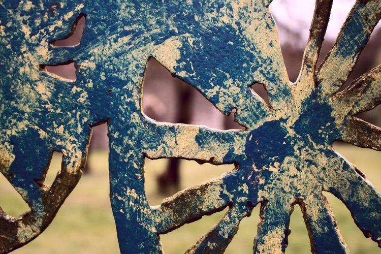 Macro Macro Beauty Bristol Mangotsfield Rust EyeEm Best Shots Eye4photography