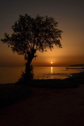 Sunrise Sea Water Sunset Sunrise Sky Tree Silhouette Tranquility Horizon Crete Greek Islands No People Idyllic Tranquil Scene Horizon Over Water Stalis Crete Scenics - Nature Beauty In Nature Plant Nature Land Beach Outdoors