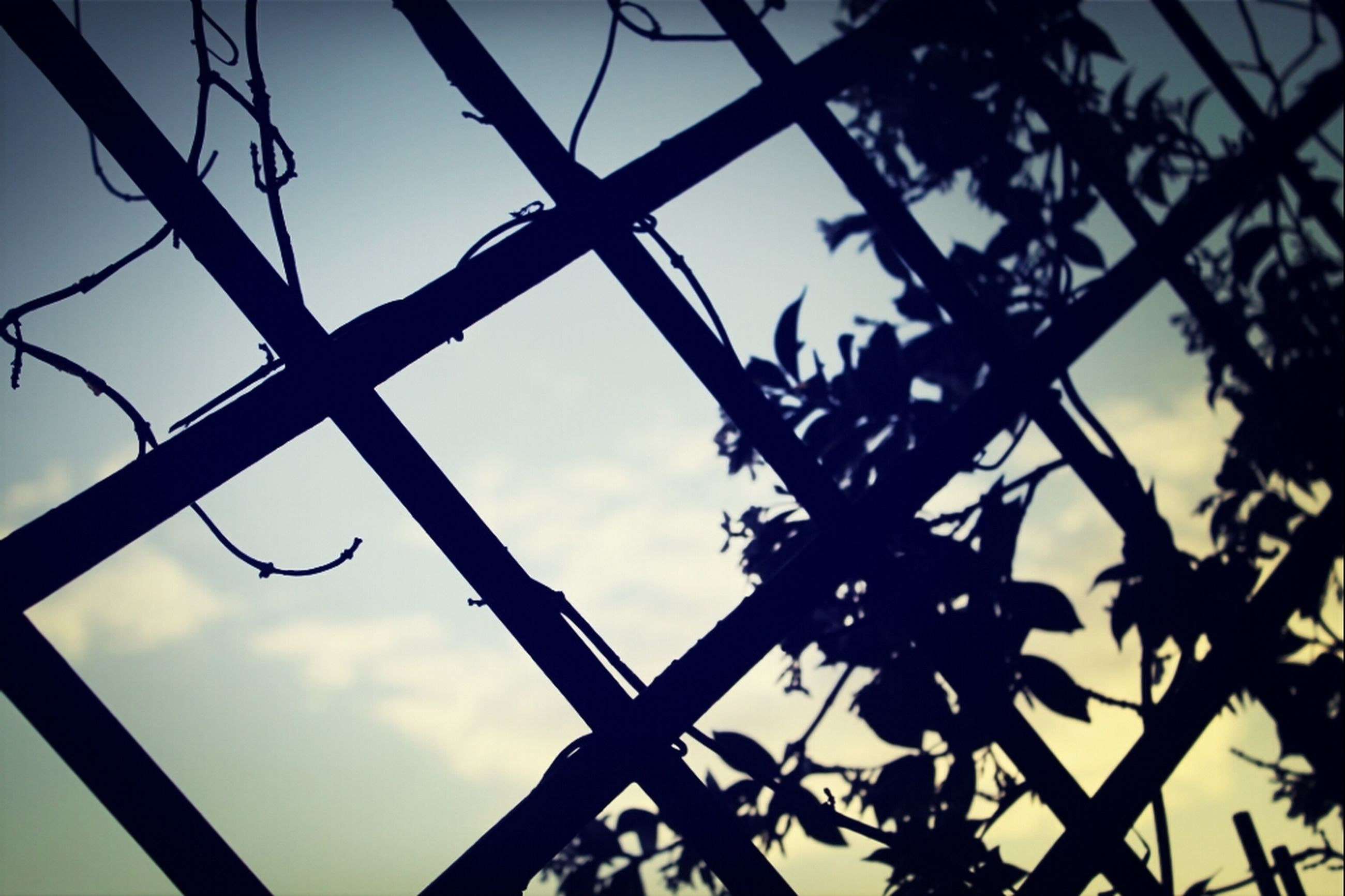 low angle view, silhouette, sky, metal, metallic, nature, sunset, cloud - sky, fence, outdoors, protection, connection, pattern, no people, day, close-up, sunlight, safety, cloud, dusk