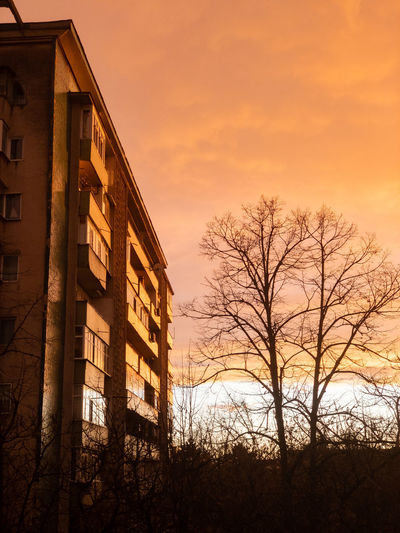 Low angle view of tree and building against sky during sunset