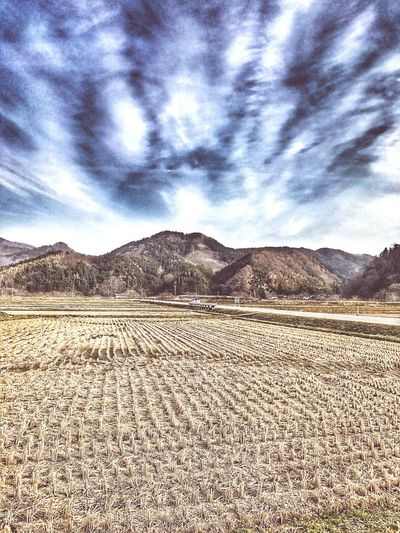 Nature Sky Landscape Scenics Mountain Tranquility Day Outdoors No People Cloud - Sky Beauty In Nature Tranquil Scene 自然 山 畑