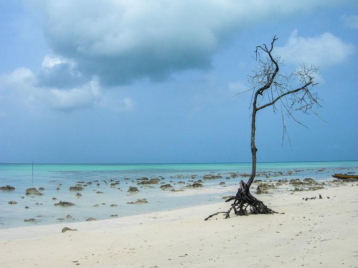 Andaman Scenics