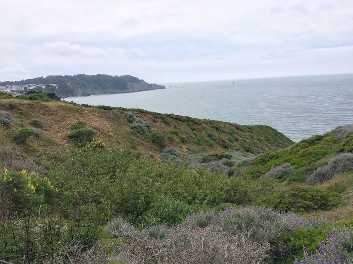 Pacific Coast Pacific California San Francisco Baker Beach Beauty In Nature Sea Scenics - Nature Tranquility Tranquil Scene Sky Plant Outdoors Beach Horizon Non-urban Scene Horizon Over Water Cloud - Sky Land Nature Day Water Growth
