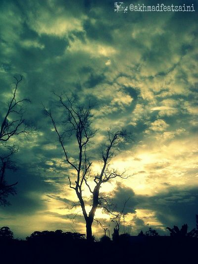 Clouds And Sky Silhouette Hugging A Tree Sky_ Collection
