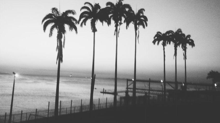 Blackandwhite Monochrome Beach VSCO Cam