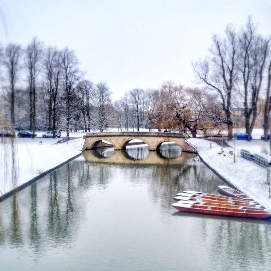 Bare Tree Boats Bridge - Man Made Structure Cold Temperature Frozen Frozen Frozen Nature Nature Punt Reflection River Season  Snow Transportation Tree Water Waterfront Weather Winter