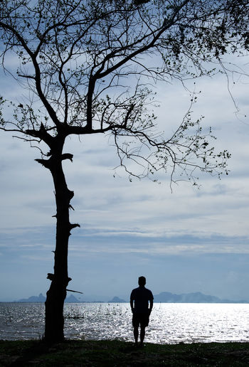 A silhouette image of a man standing and looking at the lake under a big bare tree Bare Tree Beauty In Nature Branch Day Full Length Horizon Over Water Lake Landscape Leisure Activity Lifestyles Nature One Person Outdoors Real People Rear View Scenics Silhouette Sky Solitude Standing Tranquil Scene Tranquility Tree Vertical Oreintation Water