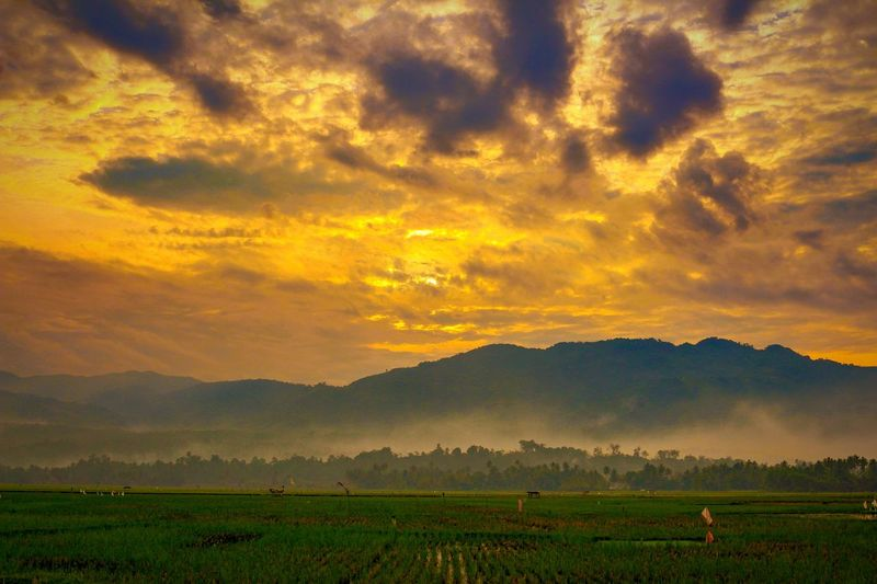 Golden hours at Sawah Solok, West Sumatera, Indonesia... Sunset Nature Landscape Sky Photography Wonderfulindonesia