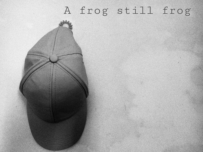 •A frog still frog•