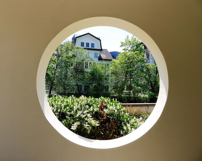 Trees Against House Seen From Manhole In Wall