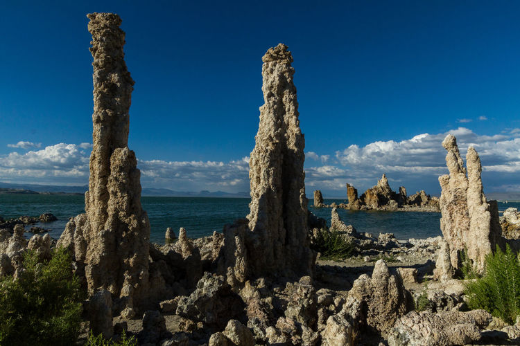 The tufas, a rare and odd looking natural formation, at Mono Lake in eastern California Travel Destinations Places To Go Travel Photography Travel Odd But Beautiful California Focus On Foreground Landscape Landscape_Collection National Park Rock - Object Rock Formation Nature Outdoors Tufas Geology Monolake Day Outdoors Photograpghy  Strange Things Earth The Great Outdoors With Adobe Lake Water Blue