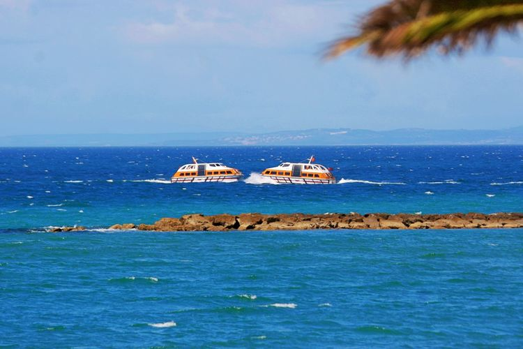 Horizon Over Water Mode Of Transportation Nature Nautical Vessel No People Outdoors Palm Tree Scenics - Nature Sea Sky Tender Boats Tranquility Transportation Water