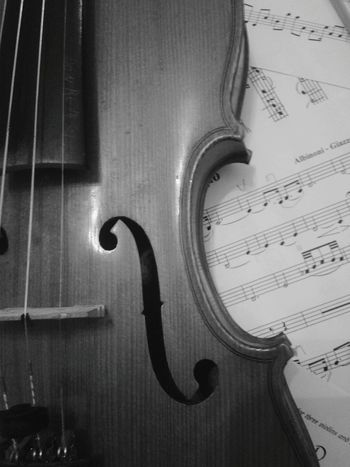 My grandma's violin Photographic Memory Violin Music Black & White Ilovemusic Adagio Wood Musical Notes Classical Music Lifestyles Musicalinstrument