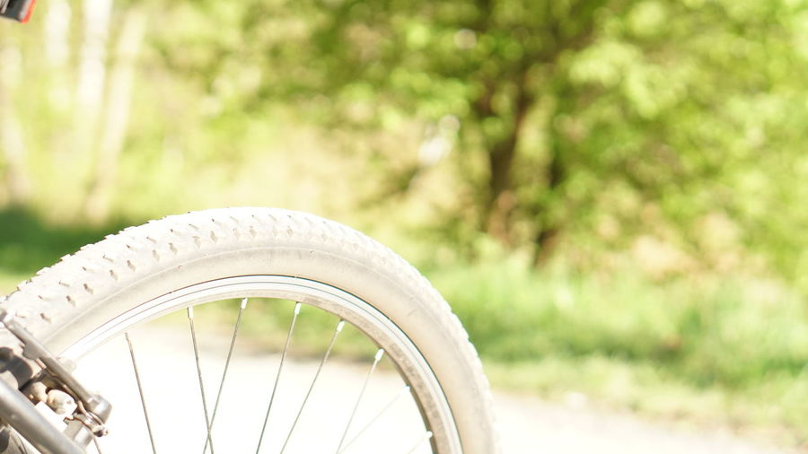 A6500 Bicycle Close-up Day Focus On Foreground Land Vehicle Metal Mode Of Transportation Nature No People Outdoors Plant Spoke Stationary Sunlight Tire Transportation Travel Tree Vehicle Part Wheel