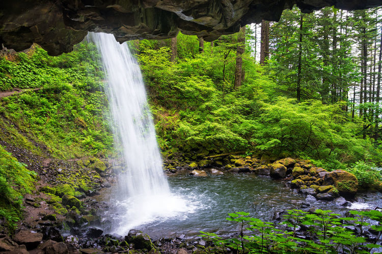 View from behind Horsetail Falls in the Columbia River Gorge in Oregon Creek Environment Falls Forest Gorge Green Landscape Multnomah Multnomah Falls  Natural Nature Oneonta Oneonta Falls Oregon Outdoors Pacific Northwest  Portland Portland, OR Scenery Scenic Stone Stream Tree Trees Waterfall