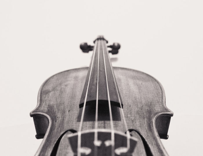 Violin details Classical Music Curl Music String The Week On EyeEm Wood Classical Music Close-up Detail Indoors  Instrument Music Musical Instrument Musical Instrument String Musician No People String Instrument Studio Shot Violin Violin Curl Violin Strings Violinist White Background Wood - Material Woodwind Instrument