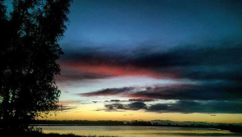 I can never capture the intensity of the pink... SkyPics Cloudpics Drivingpics Norcal Hwy99 Sunset Reflections Ricefields