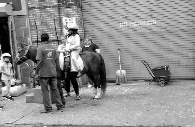 pony back riding Pony Ride Pony Streetphotography People Photography NYC Street Mode Of Transport Hanging Out Horse Photography
