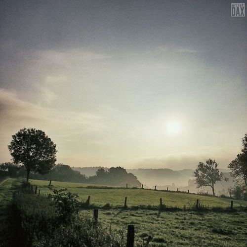 Misty morning V artist:DAX PHOTOGRAPHOHOLIC | born to capture | ArtistDAX Outdoor The Great Outdoors - 2015 EyeEm Awards Fall Beauty EyeEm Best Shots - Nature EyeEm Best Shots EyeEm Nature Lover Smartshots Landscape_photography Countryside