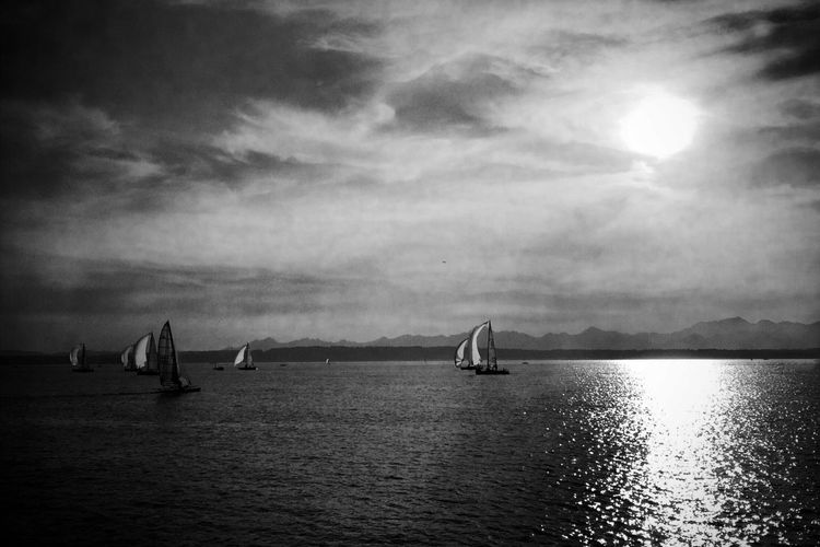 Nature Sailing Black & White