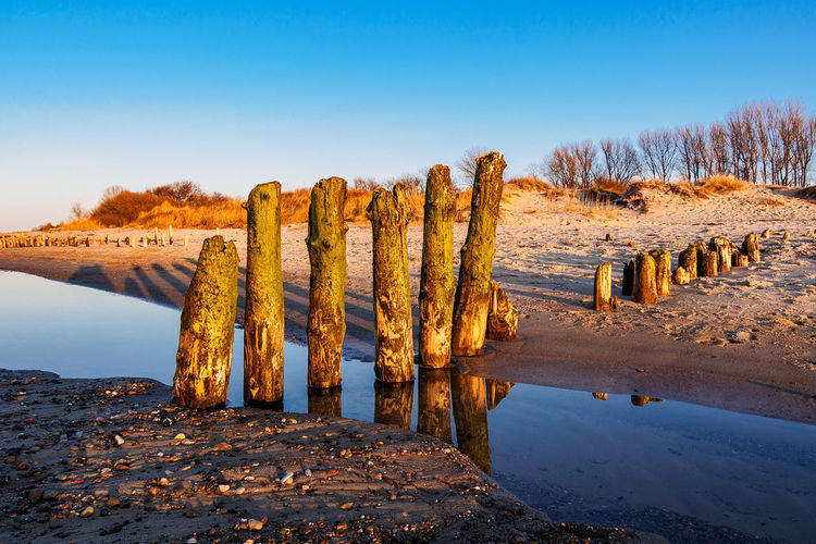 Groynes on shore of the Baltic Sea. Baltic Sea Kuehlungborn Relaxing Travel Trees Beach Beauty In Nature Cloud - Sky Coast Dune Groynes Journey Kühlungsborn Landscape Nature Outdoors Scenics Seascape Shore Sky Travel Destinations Vacation Water Waves