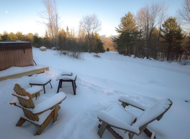 snow covered Adirondack chairs 2 Adirondack Chairs Adirondack Mountains Adirondacks ADK Bare Tree Chair Cold Cold Temperature Covered Covering Day Firepit Frozen Season  Snow Snow Covered The Way Forward Tree Weather White White Color Winter
