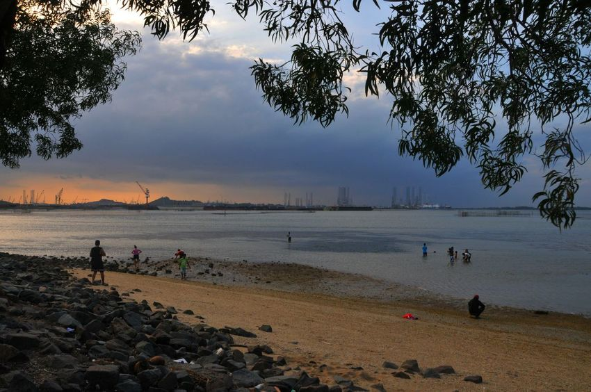Pantai Marina Batam Beachphotography Lanscape Photography Sunset #sun #clouds #skylovers #sky #nature #beautifulinnature #naturalbeauty #photography #landscape Eyemphotography Sky #clouds #blue #freshair #wind Sunsetlovers Enjoying Life Batam, Indonesia Hanging Out Silouette & Sky Silhouttelovers