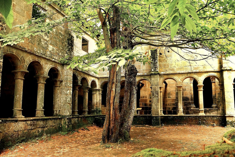 Monastery Abbey Abbey Ruins Claustro Galicia Orense,Spain Santa Cristina De Ribas De Sil Abandoned Arch Architectural Column Architecture Arcos Built Structure Cloister Damaged History Middle Ages Old Ribeira Sacra Ribeira Sacra Lost World Romanesque Ruinas Ruined The Past Tree