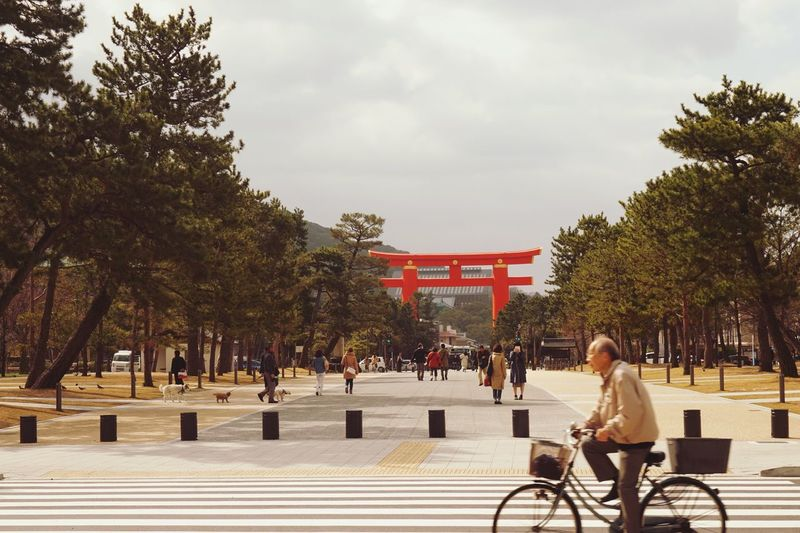 Japan TORII Bicycle Lifestyles Japan Photography First Eyeem Photo