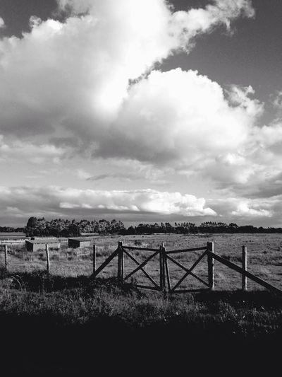 Field Clouds South Black And White Chiloé, Chile Landscape Outdoors Nature Colours Of Nature