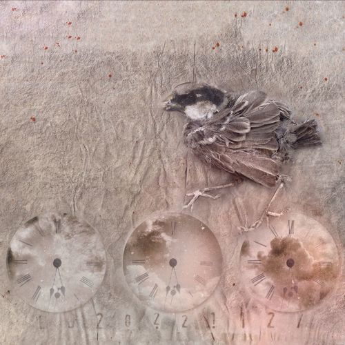 The Cuckoo Clock / Guguklu Saat NEM BadKarma Mobfiction AMPt Community NEM Memories Mobilephotography AMPt_community