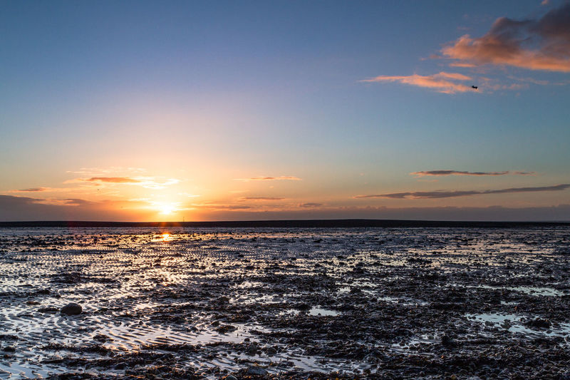 The sun rising over oyster beds on the island of West Mersea in the United Kingdom. Sky Sea Water Sunset Scenics - Nature Horizon Horizon Over Water Tranquility Beauty In Nature Tranquil Scene Cloud - Sky Beach No People Nature Land Orange Color Sun Outdoors Idyllic West Mersea Oyster Beds Oysters Environment Sunrise