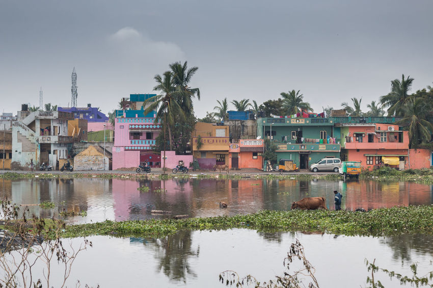 Natural disaster - flood and cyclone damage .. Reflection Water Outdoors Day Sky Disaster Nature Flood Cyclone Chennai Houses Colorful Tadaa Community Taking Photos India Tamilnadu On The Move Landscape Residential District Architecture Streetphotography Overcast Tree Effects In Nature Calamity