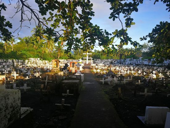 Sign up now, people are dying to get in here! White Cross Dead People Cemeterybeauty Total Silence Tree Outdoors Water Day No People Sky Nature