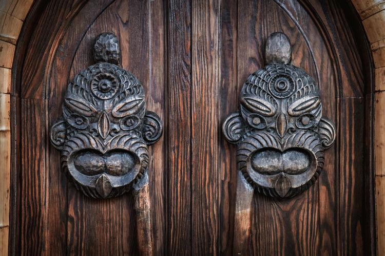 Close-up of cat on wooden door