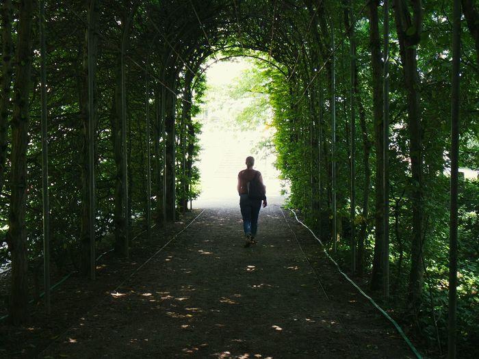 Rear view of woman walking in green tunnel