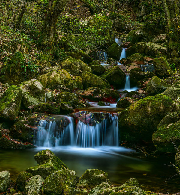 Beauty In Nature Day Forest Long Exposure Moss Motion Nature No People Outdoors Rock - Object Scenics Travel Destinations Tree Water Waterfall