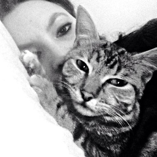 Blackandwhite Cat Lovers