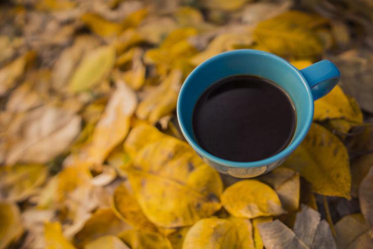 Cup Leaf Mug