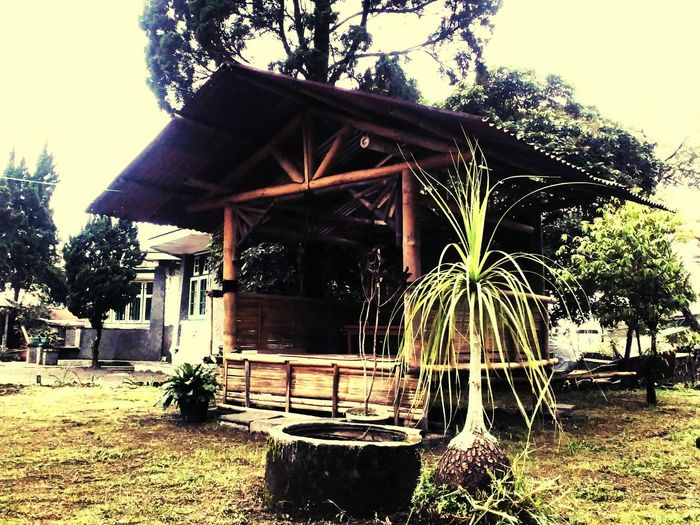 Showcase: December Homesweethome Frontyard Hut Enjoying Life Yogyakarta, Indonesia EyeEm Indonesia Indonesia_photography Taking Photos