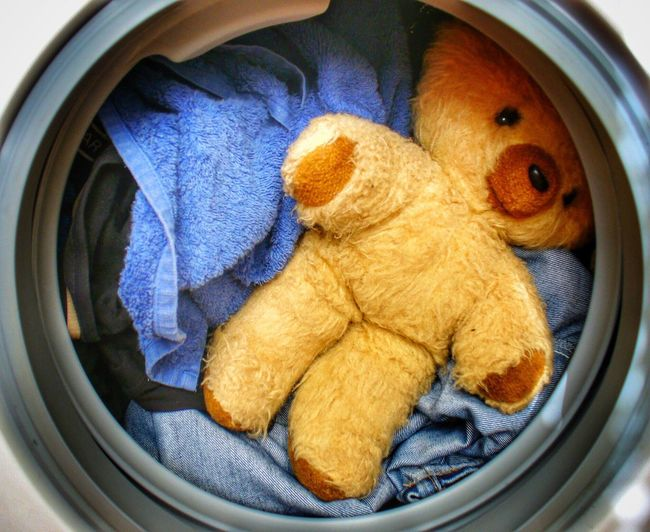 Teddy Bear Stuffed Toy Toy No People Washing Machine Washing Laundry Day Laundry Stuck Sad Sad Teddy Bear Teddy Bear Teddybear Toys Blue Dirty Clean Cleaning Washing Clothes Wash Childhood Ready Brown Old Toys