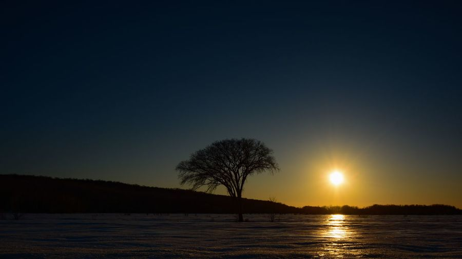 Winter views from Quebec Canada Sky Tranquility Tree Scenics - Nature Tranquil Scene Beauty In Nature Sunset Silhouette Sun Water Plant Nature No People Clear Sky Lake Copy Space Non-urban Scene Land Environment Outdoors