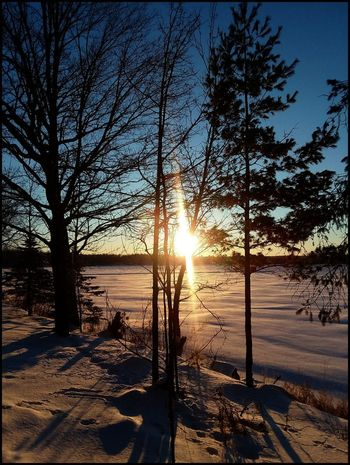Roy Lake Mn taken this morning ~23 below🌡 HAPPY WEEKEND FRIENDS 🤗 Sunlight Tree Nature Sunbeam Sun Sunset Scenics