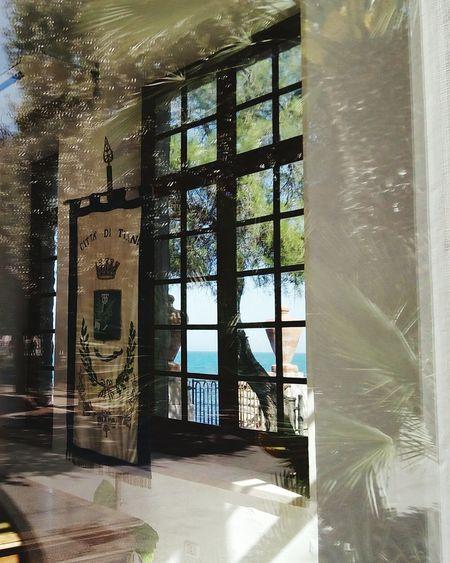 Reflection Palm Trees Park Adriatic Sea Window City Architecture Built Structure Building Exterior